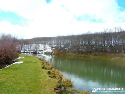 Hayedo Montejo; Reserva Biosfera Sierra Rincón; rutas de senderismo en madrid; senderismo cerca de